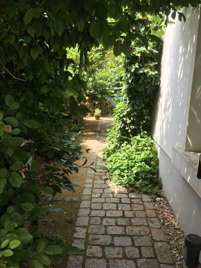 Gewuchs im Gartenweg zur Inszenierung von Übergängen