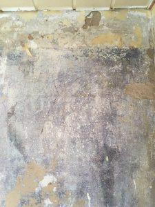 Alte Wandgestaltung mit abgesetzter Bordüre im oberen Bereich