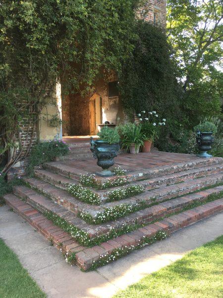 Bewachsene Ecke einer Treppe